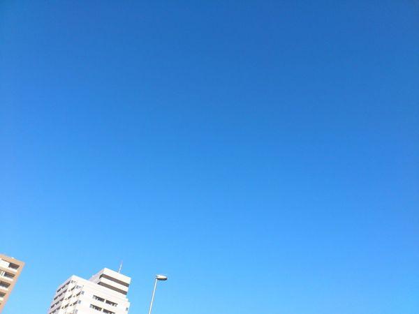 DSC_0129_1280.jpg